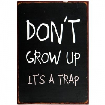 "Schild mit Spruch ""Don't grow up..."""
